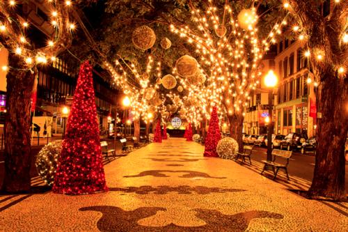 47551-Christmas-Light-Decorations