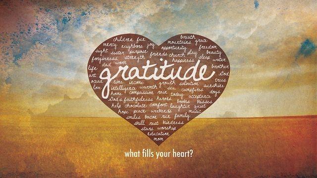 48687-Gratitude